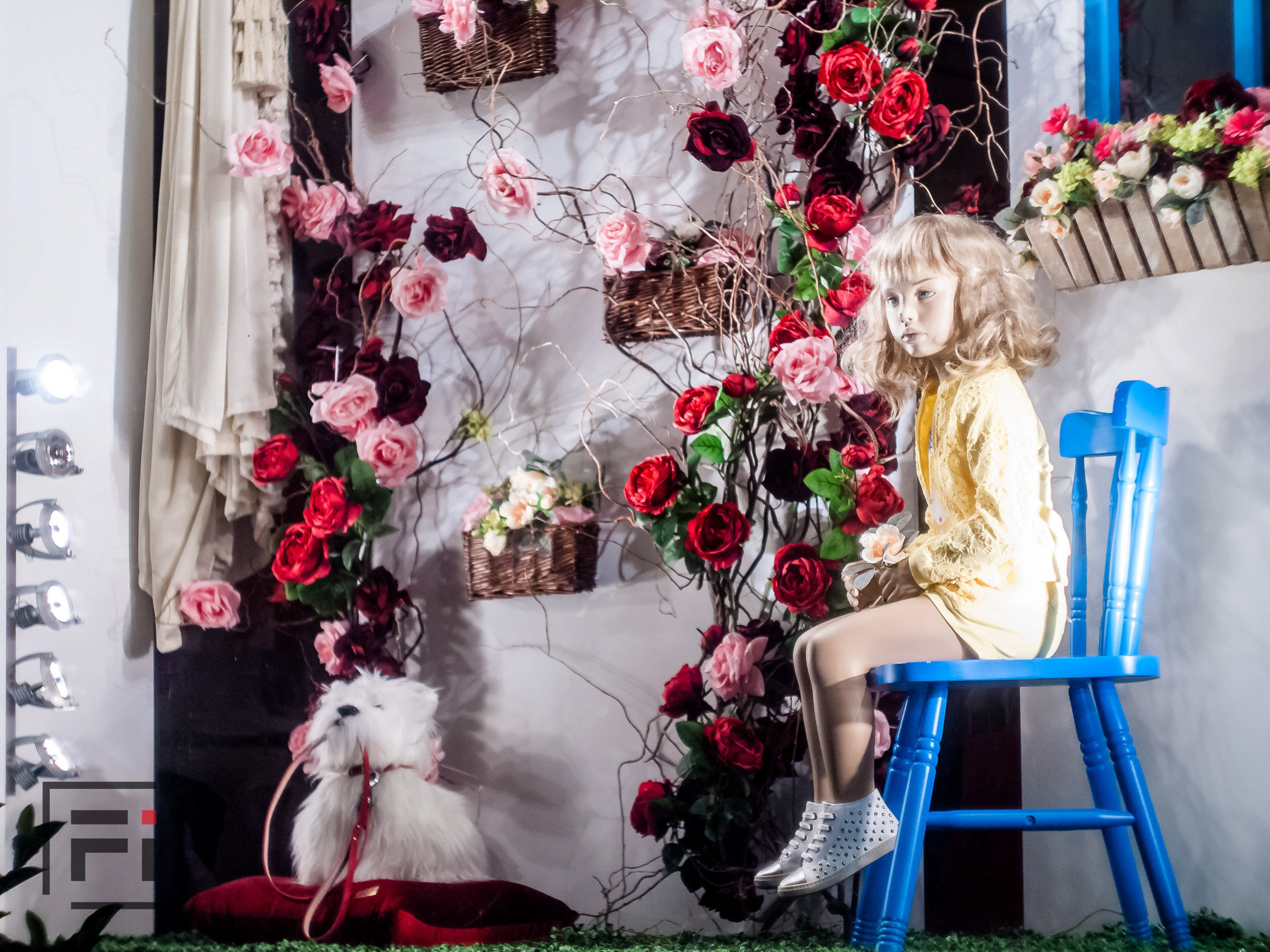 Baby Marlen Helen shooting real estate photography and photographing real estate interiors store in Kyiv children dog showcase with flowers awesome installation for retail shop by Fantastic Imago-2